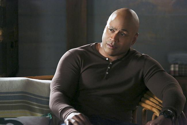NCIS: Los Angeles season 8: Sam's wife Michelle and the big picture